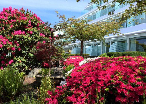 Victoria BC Garden