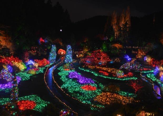 Christmas Lights at Butchart Gardens Sunken Garden