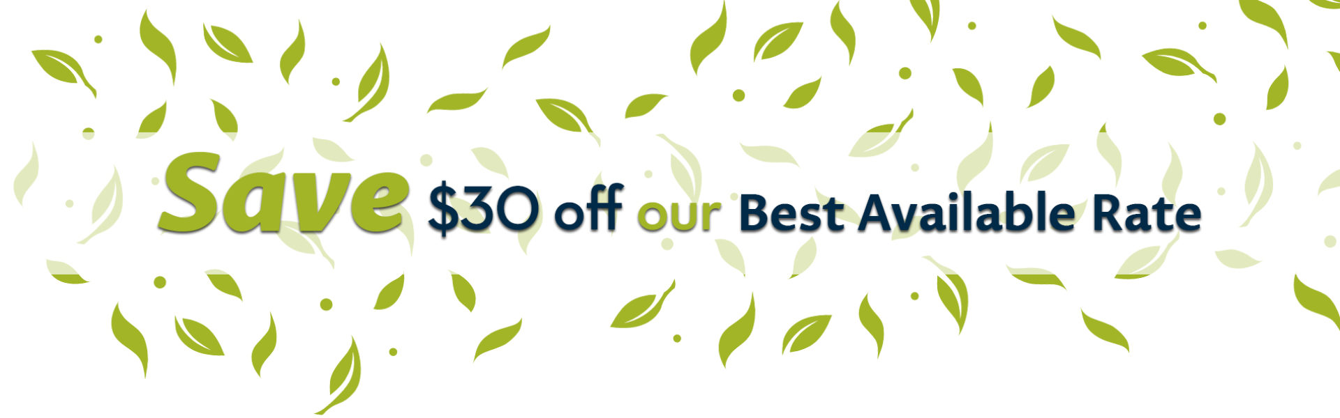 Save $30 off our best available rate banner