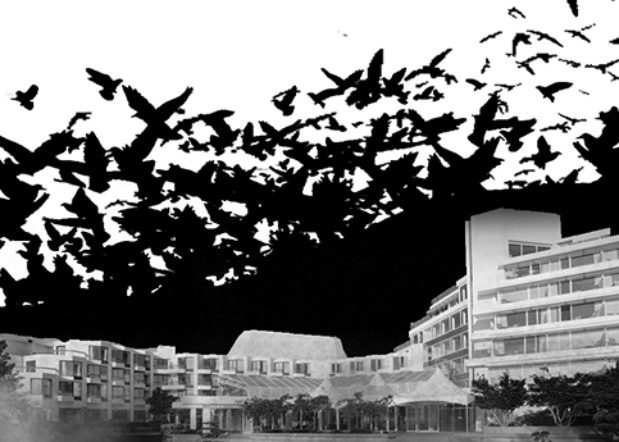Black & white photo of Inn at Laurel Point hotel with eerie bird silhouettes