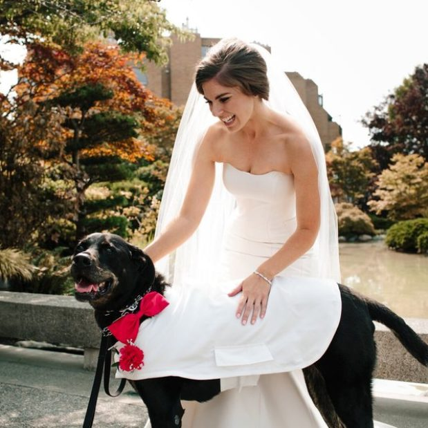 Bride with ring bearer dog on wedding day