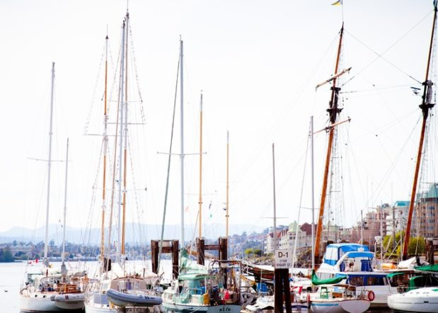 sailboats moored in Victoria BC inner harbour
