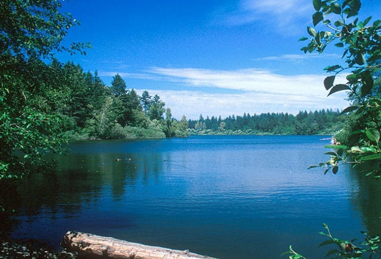 Elk Lake Victoria BC