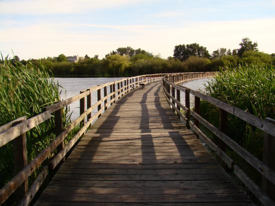 Swan Lake Victoria BC